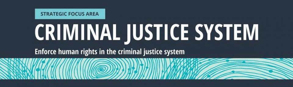 Strategic focus area: Criminal Justice System. Enforce human rights in the criminal justice system.